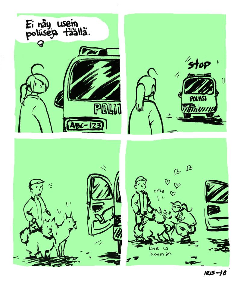 poliisi_fin